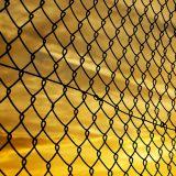 fence-72864_640
